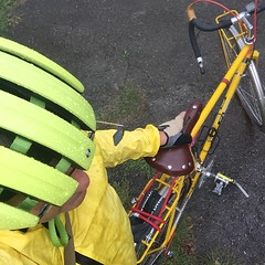 Lots of yellow for a rainy day (ddsiple) Tags: cycling jacktaylor rivetsaddle