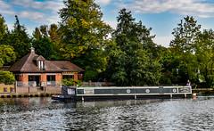 Narrowboat sailing east along the Thames, approaching Marlow (philbarnes4) Tags: marlow buckingham shire england riverthames philbarnes water dslr nikond5500view