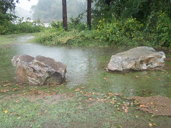 UW110038.jpg (jramspott) Tags: georgia storm river nature water chattahoochee atlanta rain tropicalstorm irma