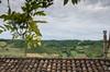 IMGP0736 (fLobOOk) Tags: cordes sur ciel cordessurciel aveyron tarn village médiéval histoire chien chat france europe garonne tarnetgaronne