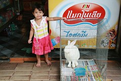 cute girl with rabbit (the foreign photographer - ฝรั่งถ่) Tags: cute girl child rabbit cage convenience store freezer khlong thanon portraits bangkhen bangkok thailand canon kiss