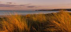 Studland Bay Sunset (Steven's Photo's) Tags: studland studlandbay isleofpurbeck dorset swanage sunset warm summer orange stevenplows panorama oldharryrocks dunes sanddunes