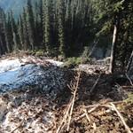 Galatea Creek Avalanche Alberta Canada thumbnail