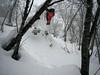 Pillow jumping (Jimi Oertli) Tags: snow winter white japan hokkaido niseko hanazono pillow tree bezerker ridesnowboards snowboarding snowboard snowboarder pow powder mountain