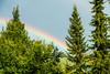 20170801 Switzerland 07191 -1 (R H Kamen) Tags: switzerland valdebagnes valaiscanton verbier rainbow rhkamen summer tree valais