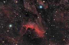 IC 5070; IC5067 - Pelican Nebula (Waskogm) Tags: aristarh waskogm wasko vasilije ristovic astronomija astronomy space cosmos kosmos svemir teleskop telescope astrophotography astrofotografija skywatcher nebula maglina pelikan pelican ic5070 ic5067 astrometrydotnet:id=nova2197021 astrometrydotnet:status=solved