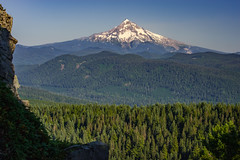Mt. Hood from Larch Mountain (GeorgeOfTheGorge) Tags: larchmountain snowcapped oregon peak forest august nationalforest summer larchmountainviewpoint mountain sherrard point sherrardpoint mounthood mthood afternoon lateafternoon mountainscape