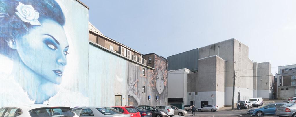 WATERFORD WALLS [AN ANNUAL INTERNATIONAL STREET ART FESTIVAL]-132081