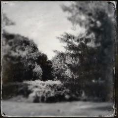 iPhone 画像28