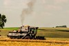 Gleaner F2 Combining Oats (Thomas DeHoff) Tags: oat harvest iowa gleaner f2 sony a700