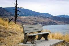 Bench with a view (Jessie T* -- still catching up) Tags: benchmonday bench kamloopslake savonabc canada view