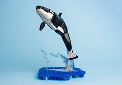 4 Killer whale (timofey_tkachev) Tags: lego moc afol orca killer whale sea