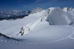_DSC3132 (farix.) Tags: alpen alps alpy schweiz switzerland szwajcaria trekking treking grat grań piz palu bernina berninagruppe gletscher lodowiec śnieg snow schnee