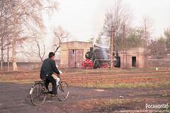 2014/3/29 SY1141 Yuxia (Pocahontas®) Tags: yuxia xian sy1141 steam engine locomotive loco railway railroad rail train shaanxi station depot 135film kodak ektar100