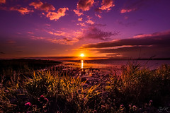 Sundown (Žèę Ķ) Tags: dusk landscape ocean outdoor rocks sea seascape stones terranova yellow bc canada richmond river sunset water sky clouds sunstar grass goldenhour redsky