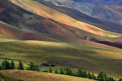 Paleta de colores. (Victoria.....a secas.) Tags: mongolia paisaje montañas mountains