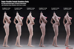 PHICEN PLMB2017-S18-S23 - 02 (Lord Dragon 龍王爺) Tags: 16scale 12inscale onesixthscale actionfigure doll hot toys phicen tbleague seamless female
