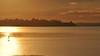 silhuetas ao entardecer (Ruby Ferreira ®) Tags: sunset silhuetas silhouettes dam represabillings floresta mataatlântica standuppaddle pôrdosol