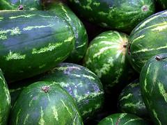 Melons (robárt shake) Tags: melonen melon nature plant pflanzen nahrung food saftig fruchtig