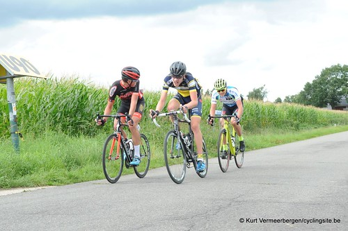 Omloop Vlaamse gewesten (356)