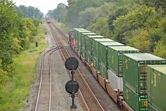 CSX Strack Train Meet at New London (craigsanders429) Tags: csxtrains csxgreenwichsubdivision newlondonohio tracks railroadtracks signals railroadsignals stacktrains csxstacktrains canadianpacificlocomotives cptrainsoncsx containertrains
