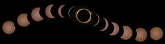 Great American Eclipse 2017 (ArmyJacket) Tags: solareclipse totaleclipse greatamericaneclipse2017 eclipse2017 2017 august212017 sun solar moon lunar astronomy greenville greenvillesc southcarolina upstate fallspark outdoor event nikon