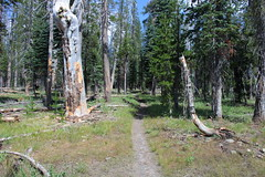 I was on the Pacific Crest Trail, briefly (rozoneill) Tags: lassen volcanic national park wilderness redding chico california hiking pacific crest trail backpacking cascades volcano peak