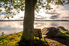 Serenity Bench (Jens Haggren) Tags: water view sea sky clouds reflections tree bench landscape seascape serenity peaceful nacka sweden jenshaggren thelonelybench