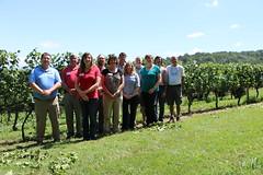 File352 (UGA CAES/Extension) Tags: grapes ugaextension cranecreekvineyards wine viticultureteam viticulture northgeorgiavineyards vineyards vines georgiawine uga