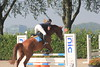 IMG_1933 (Bas & Emily) Tags: horse jump jumping horsejumping amazone ruiter rsva kampioenschap paard springen natuur nature finale