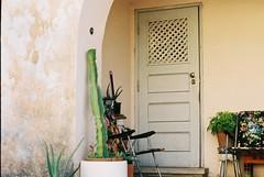F1000001 (saracarodrigues) Tags: pentax spotmatic asahipentaxspotmatic fujicolor200 setubal portugal 1stroll experience door chairs cactus