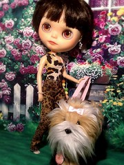 Blythe-a-Day#10. Sunny: Teen Model Nylah Goes for a Walk with Her Dog Sugar