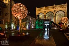 dandelion odeonsplatz (genelabo) Tags: dandelion streetlife festival odeonsplatz münchen munich strasenfest green grün sony 6300 city night nacht pusteblume light lights licht