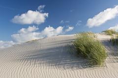 beautiful Amrum dunes (kalakeli) Tags: amrumdünen amrum dunes dünen sky himmel insel island nordsee northernsea august 2017 sand impressionen impressions