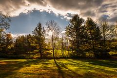 Today's Sunrise (Nicholas Erwin) Tags: autumn fall scenic contrast landscape trees outdoor sunrise sun sunny fallfoliage nikon d610 2018g waterbury vermont vt unitedstatesofamerica usa america golden goldenhour iso50 fav10 fav25 fav50