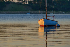 Cape Cod 2017 48 (nwalthall) Tags: capecod sailboats sunrise