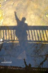 Transforming into a shadow (mhd.hamwi) Tags: shadow shadows abstract abstractism sun sunny cold autumn fall me mohammadhamwi mhdhamwi syria syrian damascus nikon nikond5000 art artistic nobody nostalgia usa indiana valparaiso water lake river reflection trees fence محمدالحموي sham syrianheart sky