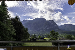 Garmisch Partenkirchen (carolienvanhilten) Tags: garmisch partenkirchen kreuzeckbahn mountains bavaria bayern beieren bergen deutschland germany duitsland cablecars kabelbaan seilbahn butterfly flowers