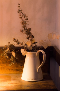 Dried Plants In Pitcher
