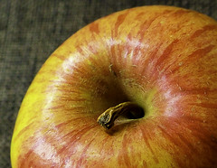 "One apple a day ... (Kat-i) Tags: ""stayinghealthymacro mondaysapfelapplemakroobstfruitnikon1 v1kat ikatharinaaugust 7 2017"