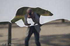 Auto portrait avec ours-2 (letexierpatrick) Tags: autoportrait ours jardindesplantes couleurs couleur colors paris portrait nikon nikond7000 selfie