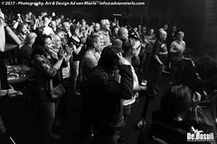 2017 Bosuil-Het publiek bij Back To Back en The Lachy Doley Group 7-ZW