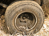 Former Squeaky Wheel (Eyellgeteven) Tags: wheel tire tires wheels rim grease greasy oil oily lug lugnuts dirt dirty filthy weeds rubber steel vehicle old used eyellgeteven abstract abstraction thesqueakywheelgetsthegrease