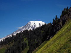 Mt. Rainier on Tatoosh Peak Trail in WA (Landscapes in The West) Tags: tatoosh tatooshpeak tatooshridge tatooshwilderness washington pacificnorthwest landscape mountrainier giffordpinchotnationalforest nationalforest