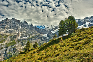 The Jungfrau mountain and the Rottal Glacier  , taken from the Busenalp. Canton of Bern, Switzerland.23.08.17, 14:07:37. .No. 7249.