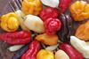 Pepper (Serena Rebechi) Tags: arancione rosso giallo peperoncini bibite still life peperoncino piccante pepper ginger