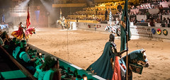 A masterful show at Medieval Times (kuntheaprum) Tags: medievaltimes dinnershow horse sword lance joust nikon d750 sigmaart 50mm f14