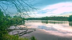 Paysage (musette thierry) Tags: marreàgoriaux france hautsdefrance nord pasdecalais thierry musette d600 vue landscape paysage nature 28300mm