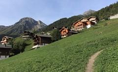 Grimentz 1572 mètres (bulbocode909) Tags: valais suisse grimentz montagnes villages chalets sentiers paysages forêts arbres vert bleu cabanedesbecsdebosson nature vald'anniviers
