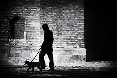 walking the dog (Sandy...J) Tags: urban street streetphotography noir walking bw monochrome blackwhite silhouette nikon shadow light wall dog city